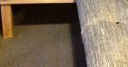 sedáky indoor na knoflíky z 05